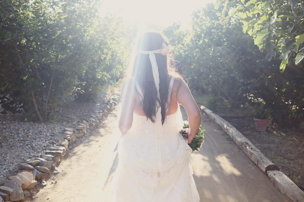 wedding photography leafhopper